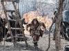 Leo Howard в фильме Конан-варвар (Conan The Barbarian)
