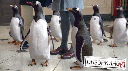 фільми пінгвіни містера поппера