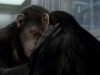 Сцена из фильма Восстание планеты обезьян (Rise of the Planet of the Apes)