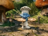     (The Smurfs)