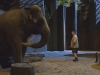 Kevin James в фильме Мой парень из зоопарка (Zookeeper)